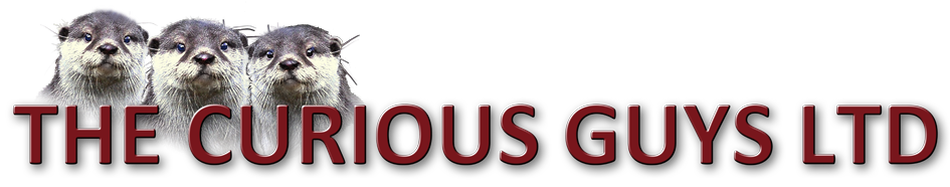 THE CURIOUS GUYS LTD